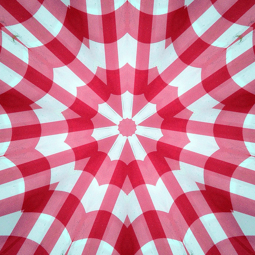 checkered tablecloth photo