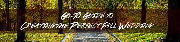 blog_perfectfall